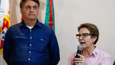Photo of Sintonia de Bolsonaro e Tereza Cristina expõe racha no DEM no MS