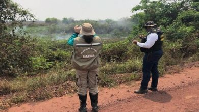 Photo of PMA aguarda laudo pericial para autuar fazendas por crime ambiental no Pantanal